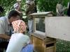 Эколого-просветительный центр Царская пасека в Измайловском парке