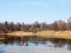 Измайловский парк. Олений пруд.